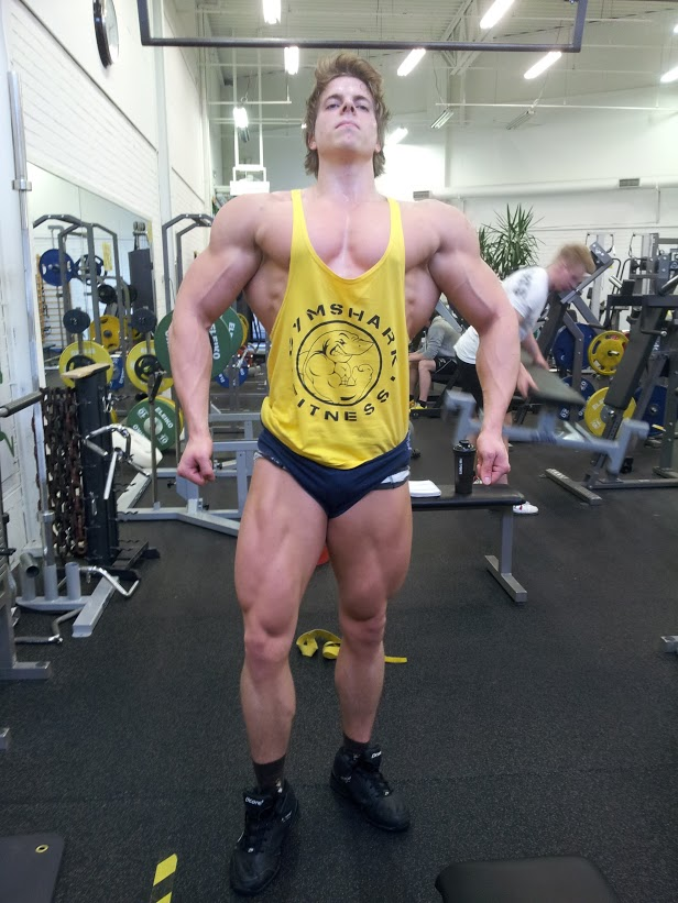 A Longer Introduction Can Be Found Here Forum Bodybuilding Com Showthread Phpt147835913