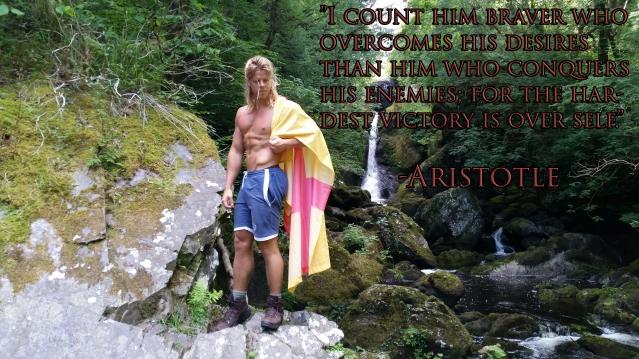 aristotele33